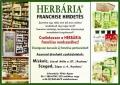 Szegeden és Miskolcon is franchise partnereit keresi a Herbária