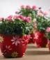 A hűtlen szerető - Valentin napi akció