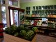 Újabb Vitamin Szalon egység nyílik Szegeden