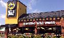 A Buffalo Wild Wings 83 étterme kerül franchise partnerekhez
